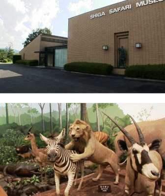 滋賀サファリ―博物館